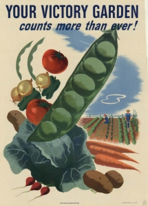 US World War II era poster promoting Victory Gardens (source: http://www.art.unt.edu/ntieva/pages/about/newsletters/vol_15/no_1/WarPosterImages.htm)
