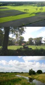 Drie landschapsbeelden die ik in mijn onderzoek heb gebruikt