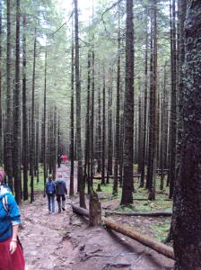 Tatra national park 2
