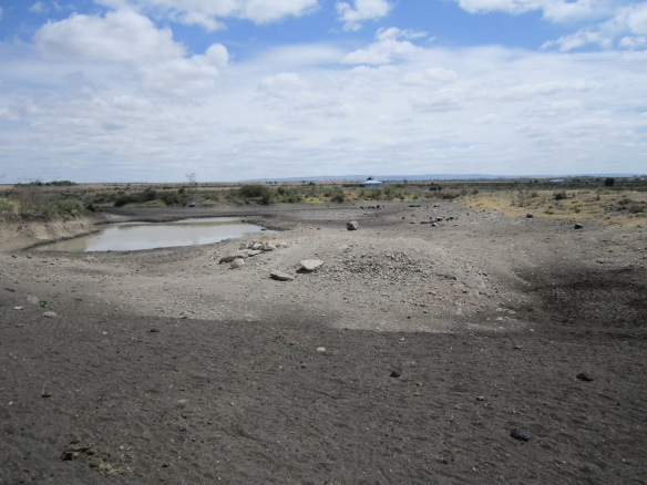Drying out water hole for cattle (a so called `dam´) during the current drought