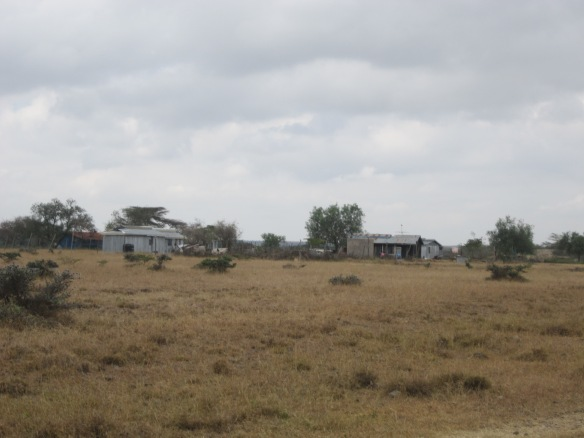 Maasai homestead in the research area