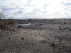 Outcome of the seasonal cycle: Dried out dam in the research area.