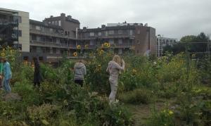 Agriculture school garden in Apeldoorn (NL)