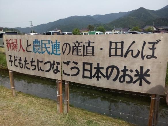 Rice planting 3.jpg